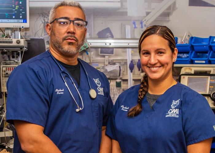 nurse program orlando