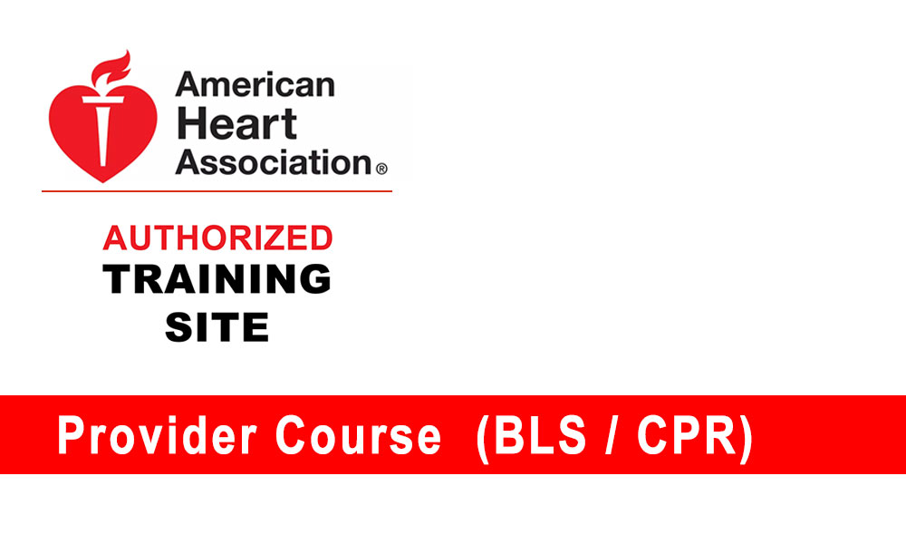 bls support basic acls pals cpr instructor course advanced aha refresher cardiac pediatric provider overview omi edu medical heart american