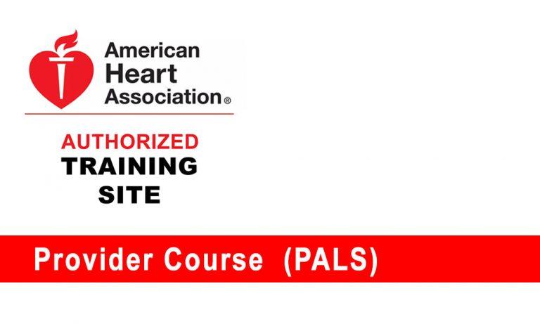 Pediatric Advanced Life Support (PALS) Provider Course